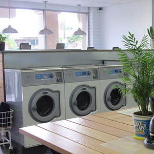 Rows of washing machines in a laundromat